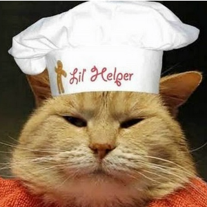 Cat with Chef Hat